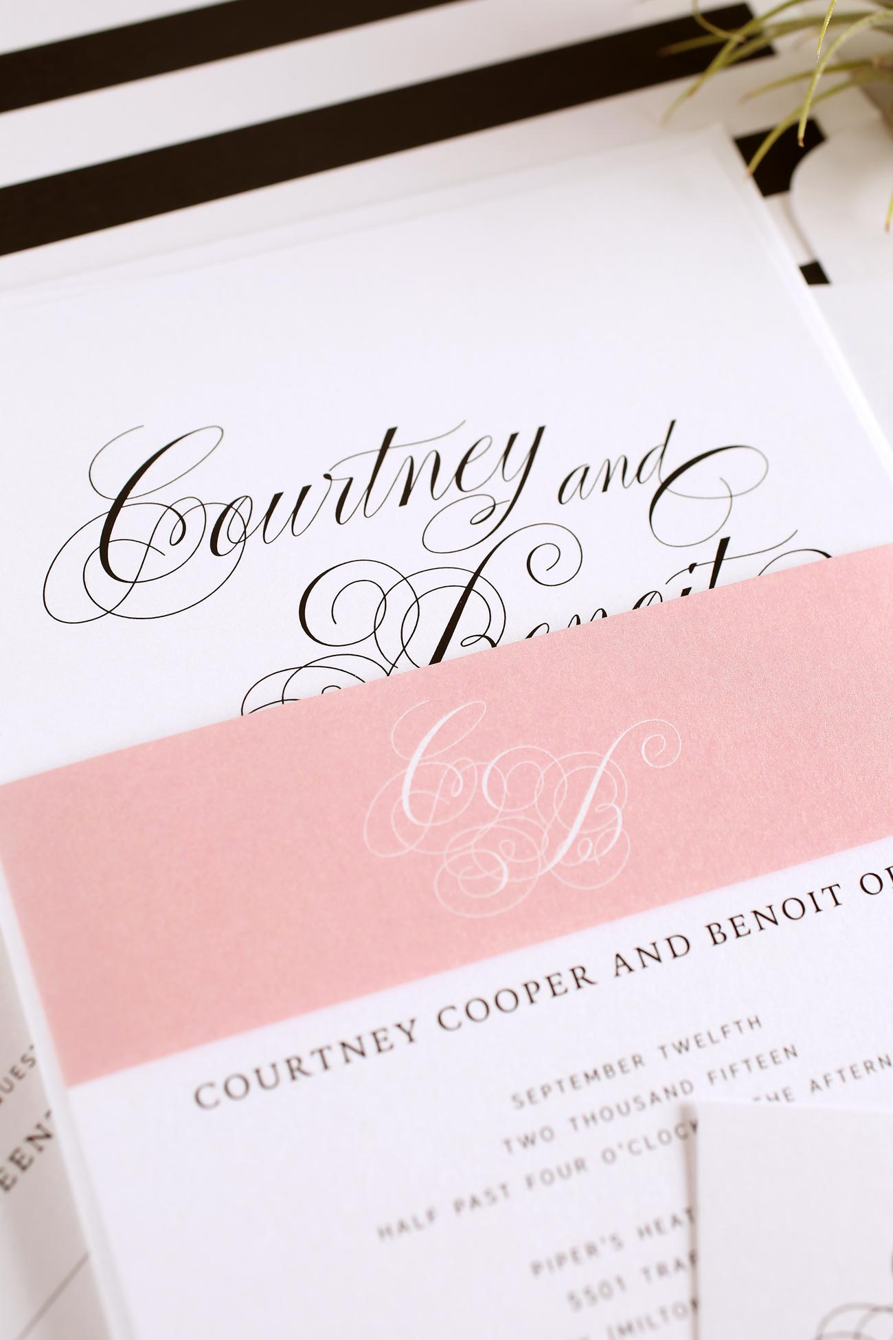 Southern Script Wedding Invitations in blush